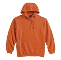 Picture of State Champion Hooded Sweatshirt