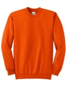 Picture of State Champion Crewneck
